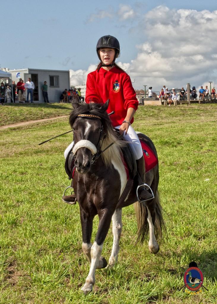 Torre De Hercules_clases de equitación_Os Parrulos_montar a caballo.3