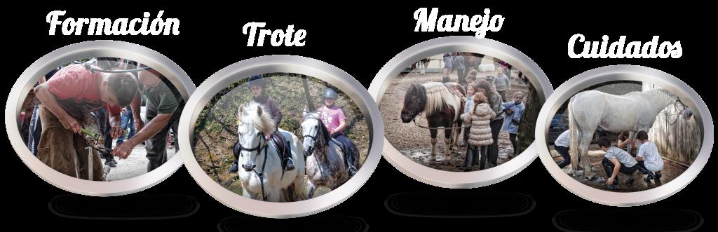 clases de equitación_La Coruña_Os Parulos_caballos_607955981_cursos