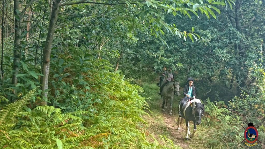 clases de equitación_La Coruña_Os Parrulos_1