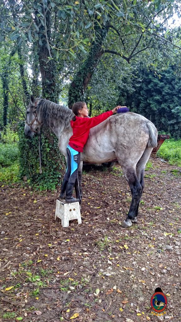 clases de equitación_La Coruña_Os Parrulos_17