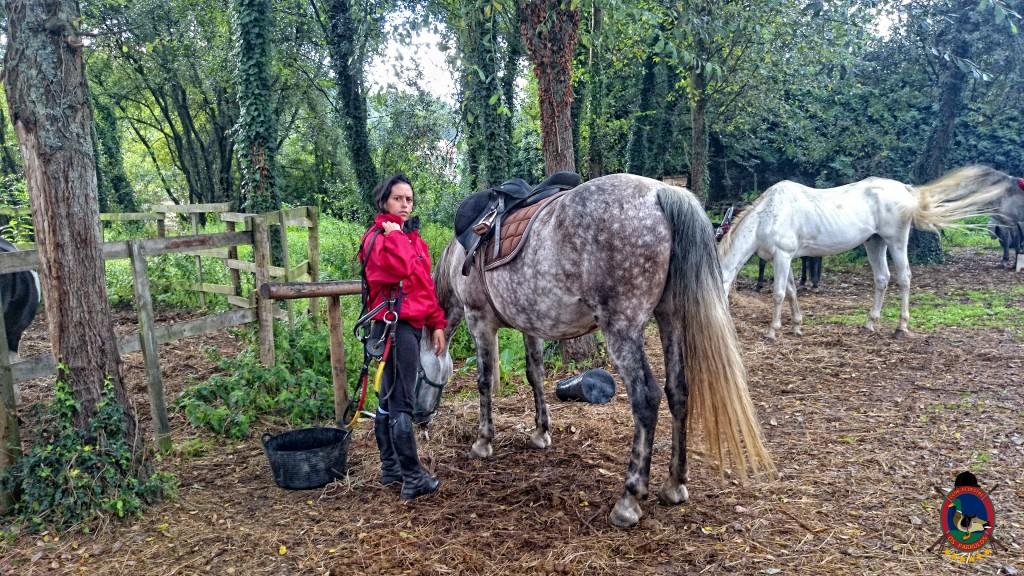 clases de equitación_La Coruña_Os Parrulos_18