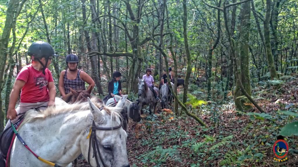 clases de equitación_La Coruña_Os Parrulos_2