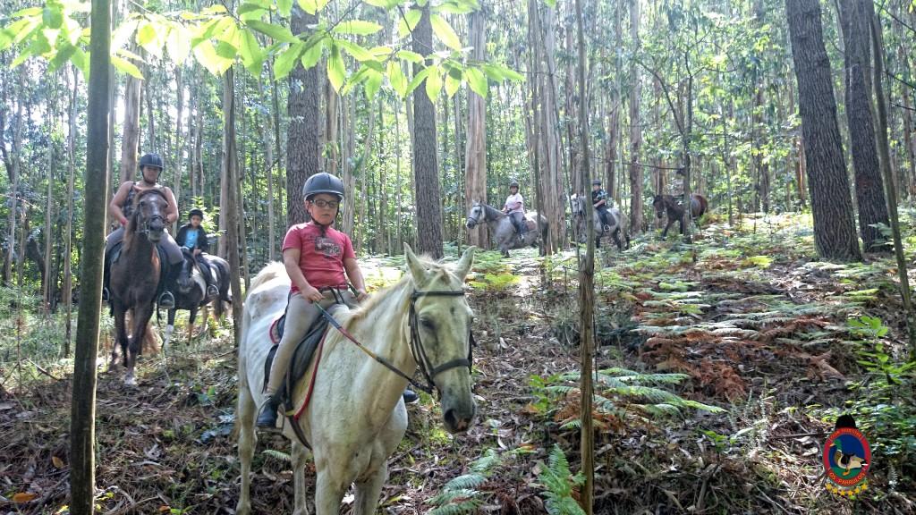 clases de equitación_La Coruña_Os Parrulos_5