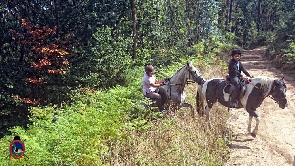 clases de equitación_La Coruña_Os Parrulos_8
