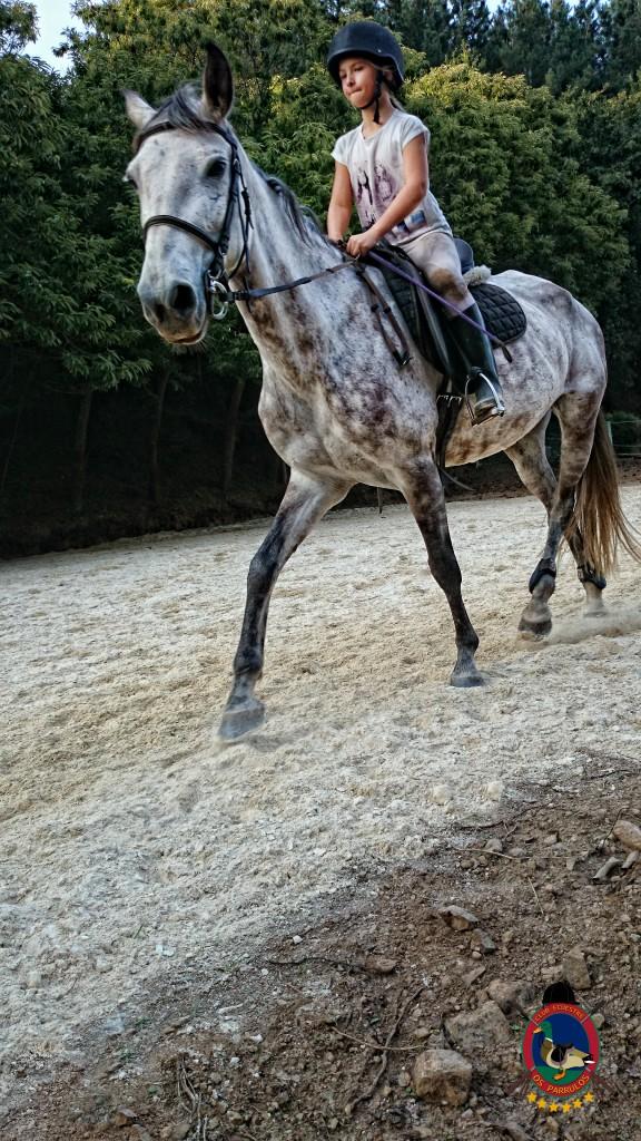 clases de equitación_Os Parrulos_montar a caballo_010