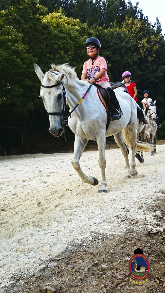 clases de equitación_Os Parrulos_montar a caballo_011