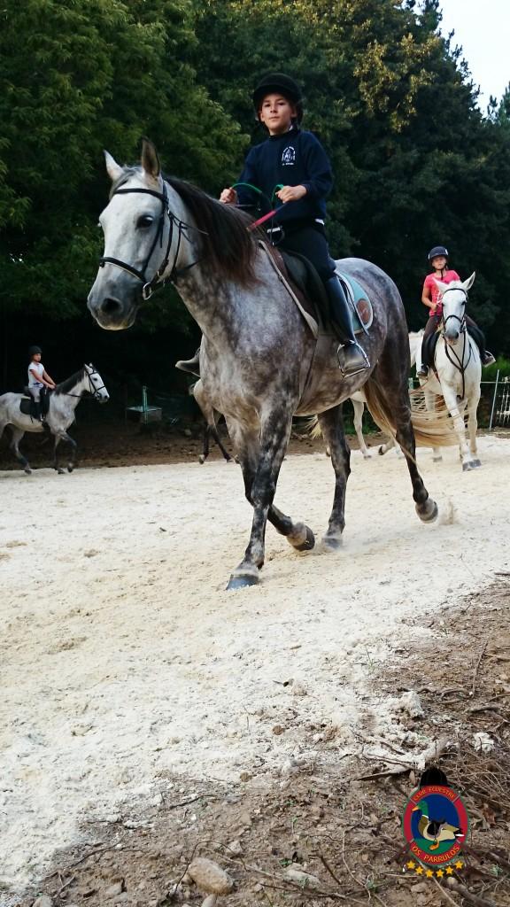 clases de equitación_Os Parrulos_montar a caballo_012
