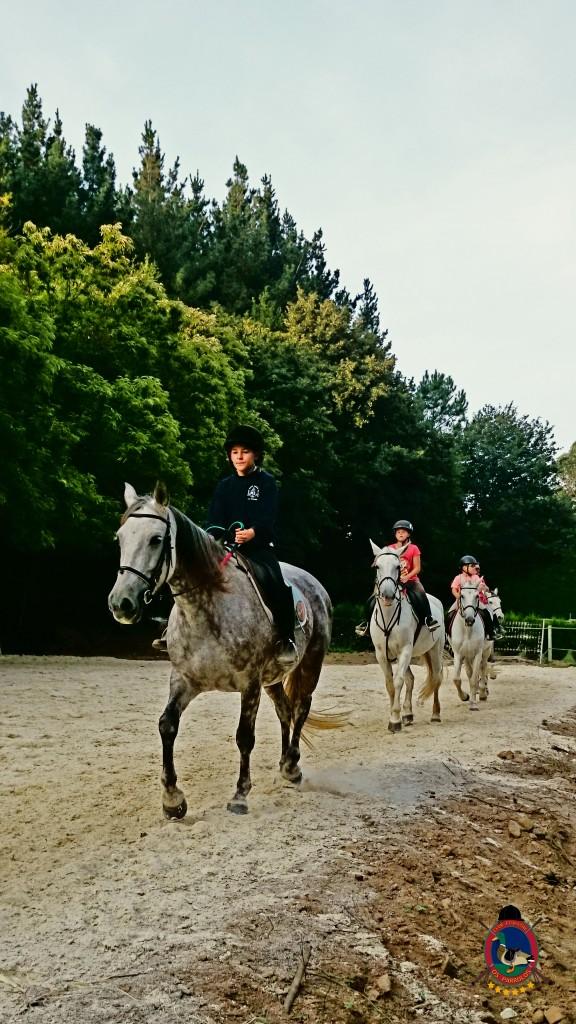 clases de equitación_Os Parrulos_montar a caballo_02