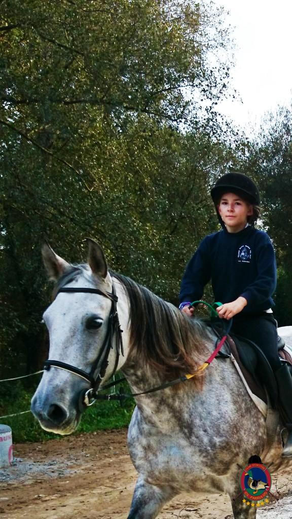 clases de equitación_Os Parrulos_montar a caballo_08