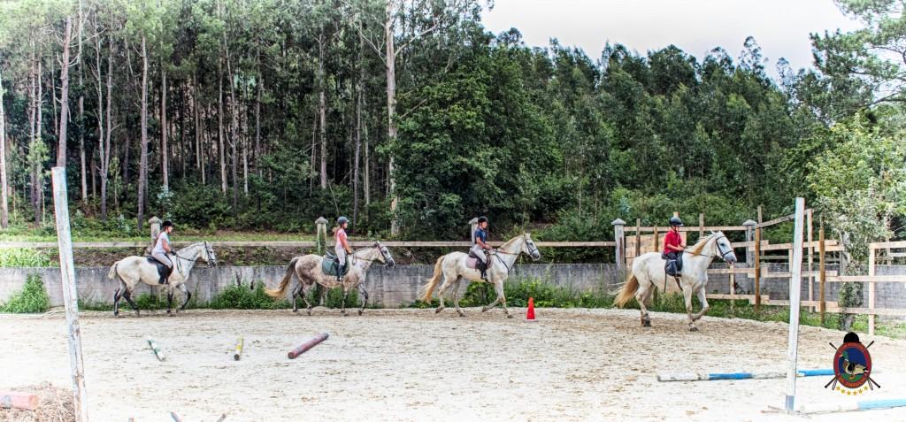 Os Parrulos_Clases de equitación_hípica La Coruña_caballos_Z1
