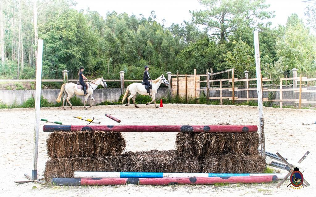 Os Parrulos_Clases de equitación_hípica La Coruña_caballos_Z4