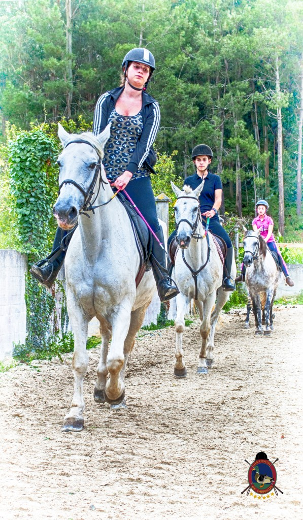 Os Parrulos_Clases de equitación_hípica La Coruña_caballos_Z5