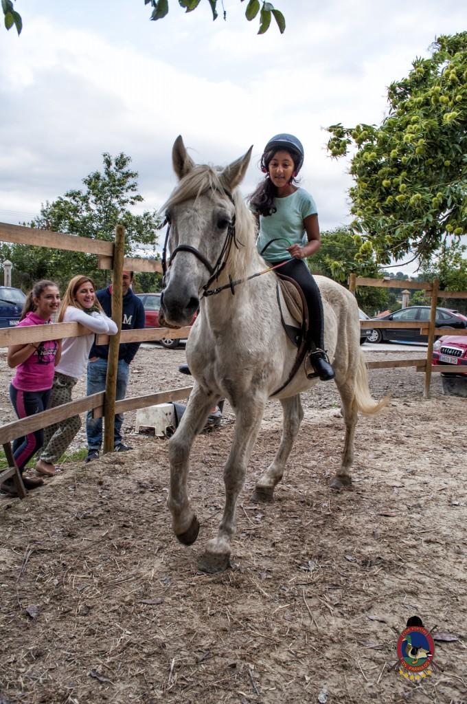 Os Parrulos_Clases de equitación_hípica La Coruña_caballos_iniciación 1