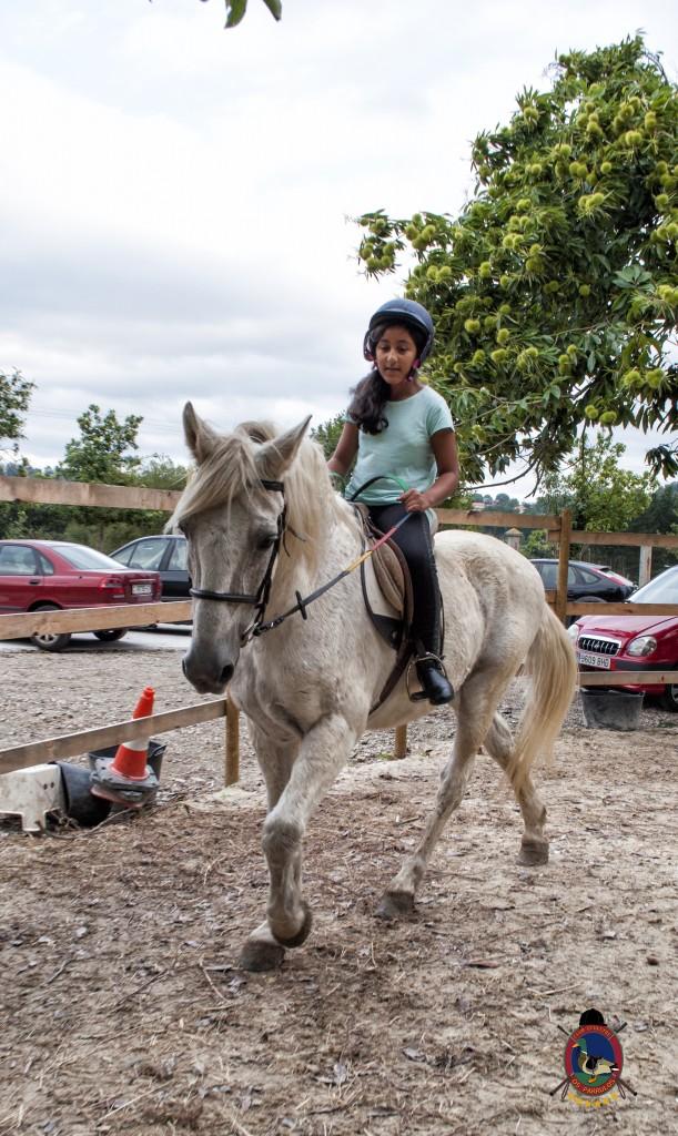 Os Parrulos_Clases de equitación_hípica La Coruña_caballos_iniciación 2