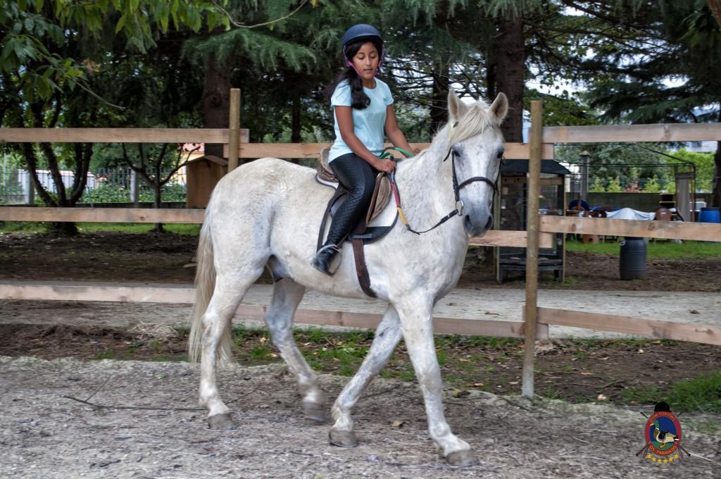 Os Parrulos_Clases de equitación_hípica La Coruña_caballos_iniciación 3