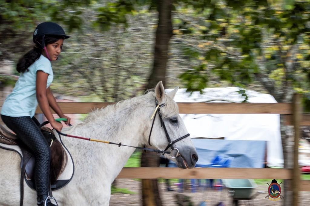 Os Parrulos_Clases de equitación_hípica La Coruña_caballos_iniciación 4