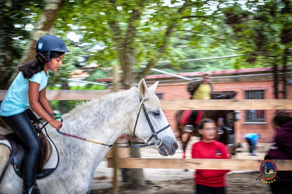 Os Parrulos_Clases de equitación_hípica La Coruña_caballos_iniciación 5