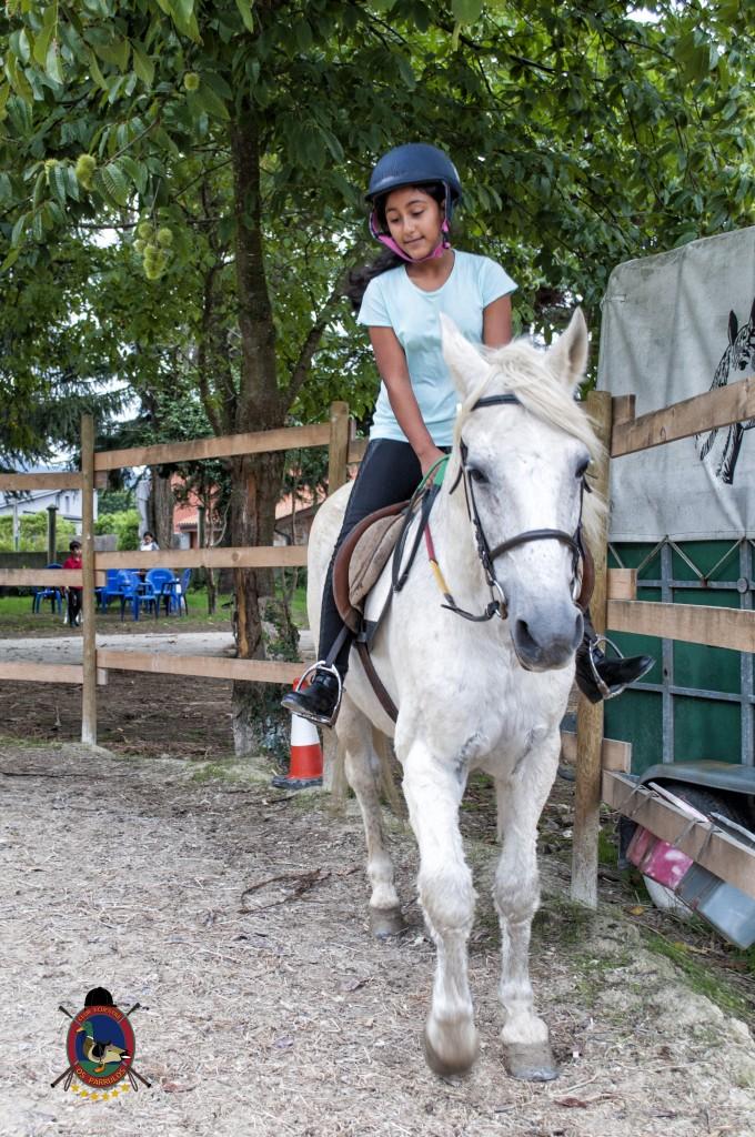Os Parrulos_Clases de equitación_hípica La Coruña_caballos_iniciación 8