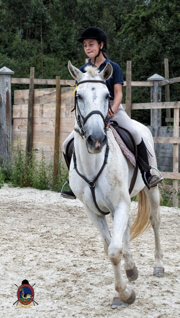 Os Parrulos_Clases de equitación_hípica La Coruña_caballos_x10