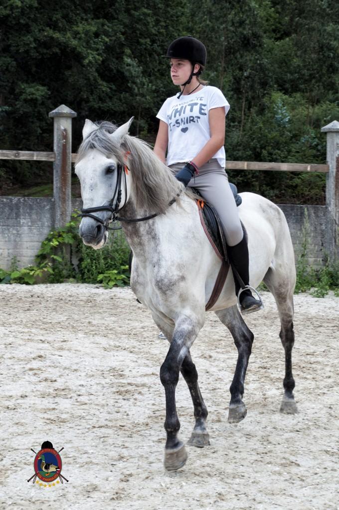 Os Parrulos_Clases de equitación_hípica La Coruña_caballos_x11
