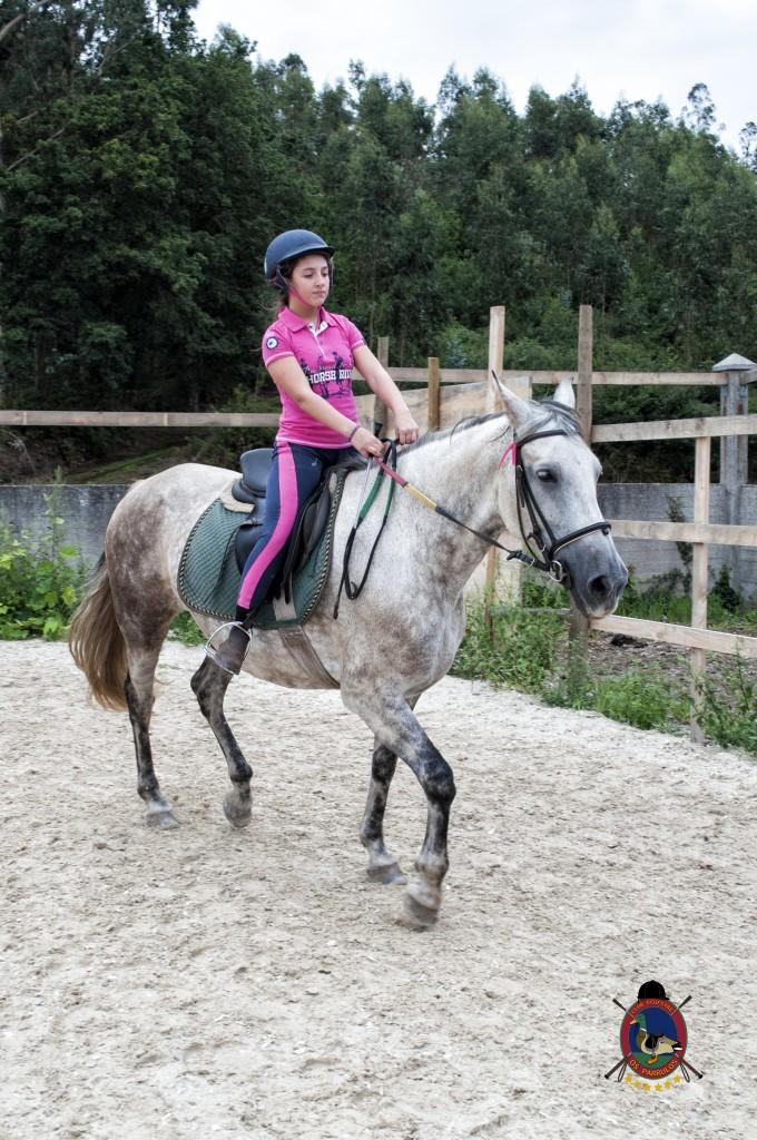 Os Parrulos_Clases de equitación_hípica La Coruña_caballos_x14