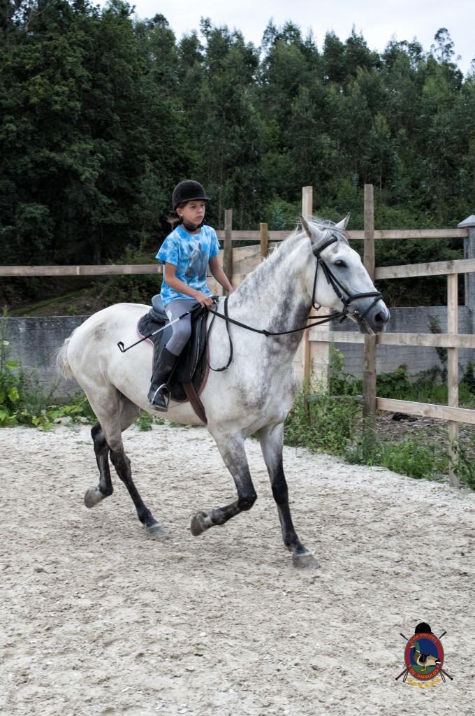 Os Parrulos_Clases de equitación_hípica La Coruña_caballos_x15