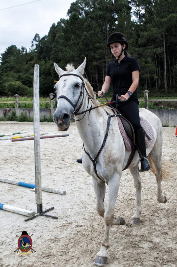 Os Parrulos_Clases de equitación_hípica La Coruña_caballos_x16