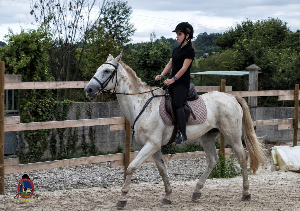 Os Parrulos_Clases de equitación_hípica La Coruña_caballos_x17