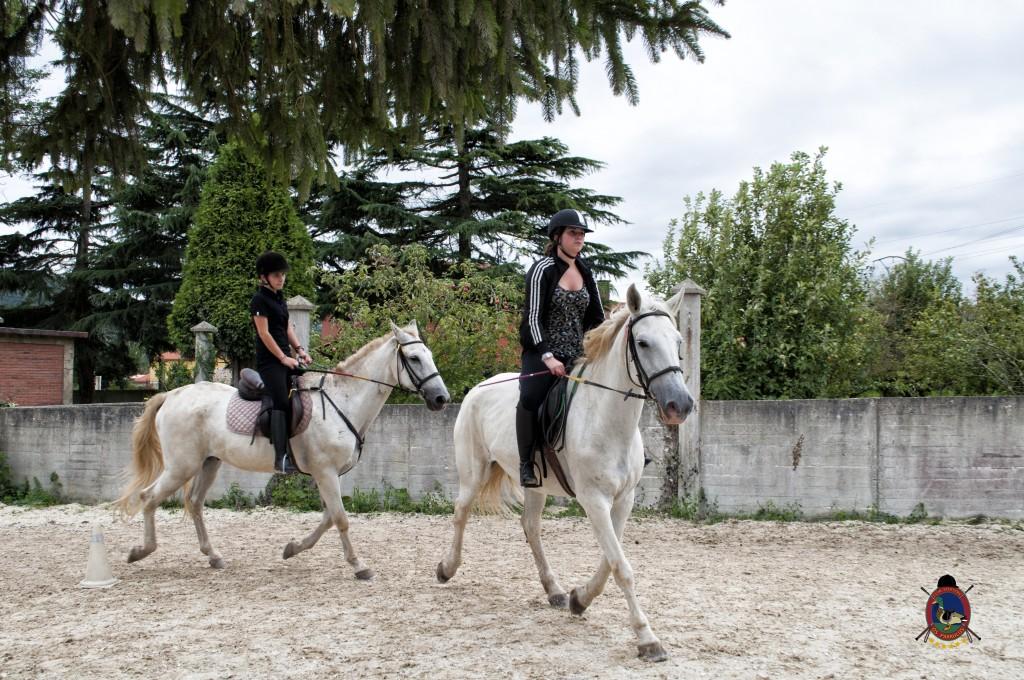 Os Parrulos_Clases de equitación_hípica La Coruña_caballos_x19