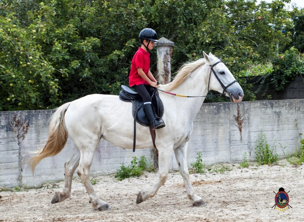 Os Parrulos_Clases de equitación_hípica La Coruña_caballos_x3