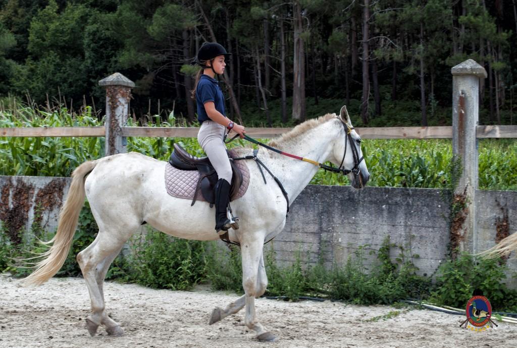 Os Parrulos_Clases de equitación_hípica La Coruña_caballos_x5