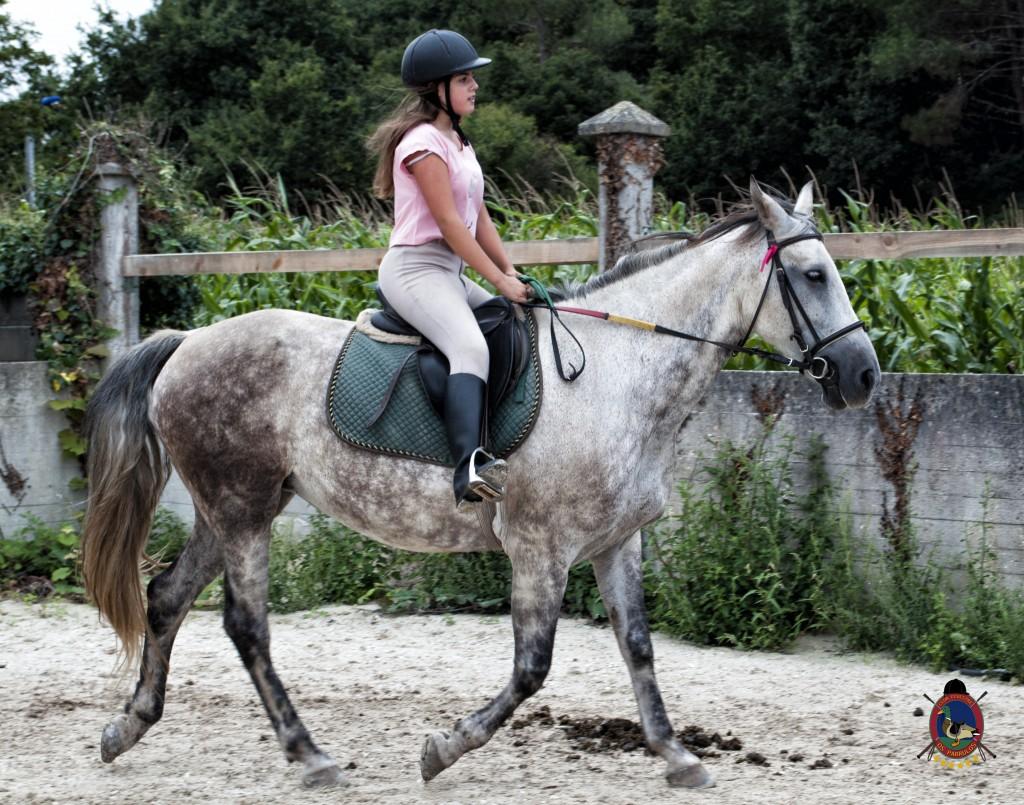 Os Parrulos_Clases de equitación_hípica La Coruña_caballos_x6