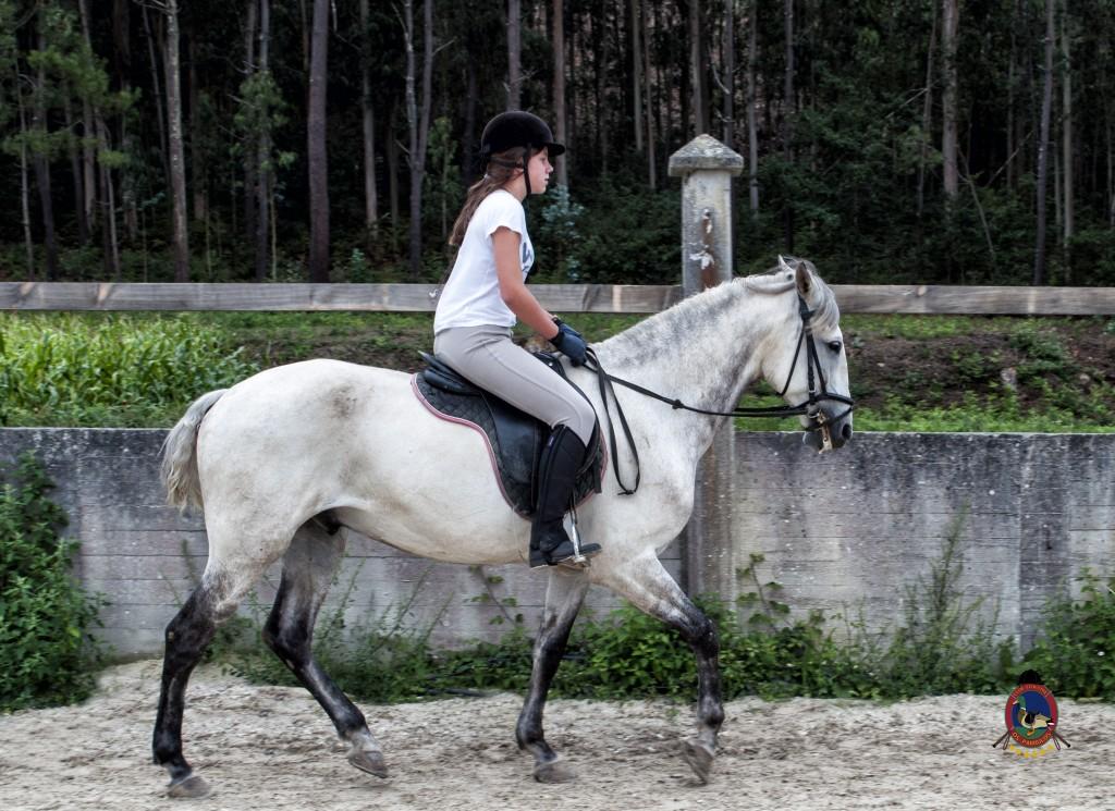 Os Parrulos_Clases de equitación_hípica La Coruña_caballos_x7