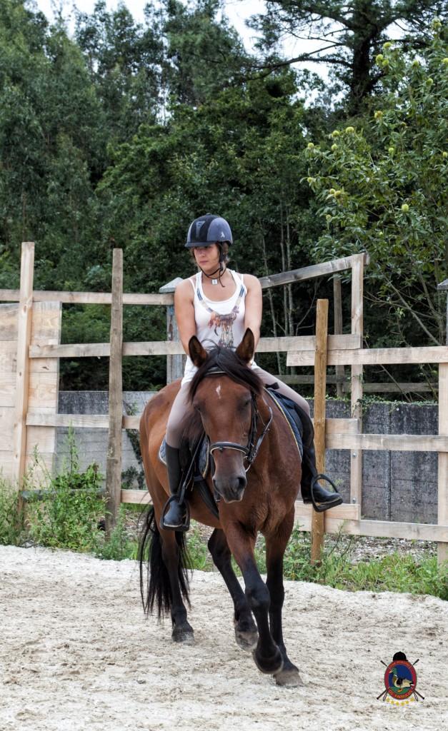 Os Parrulos_Clases de equitación_hípica La Coruña_caballos_x8