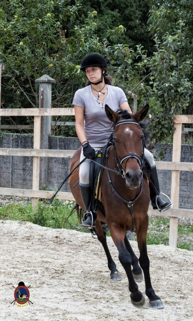 Os Parrulos_Clases de equitación_hípica La Coruña_caballos_x9