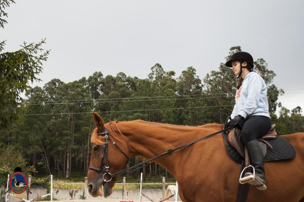 Os Parrulos_clases de equitación_clases de salto_hipica La Coruña_T10