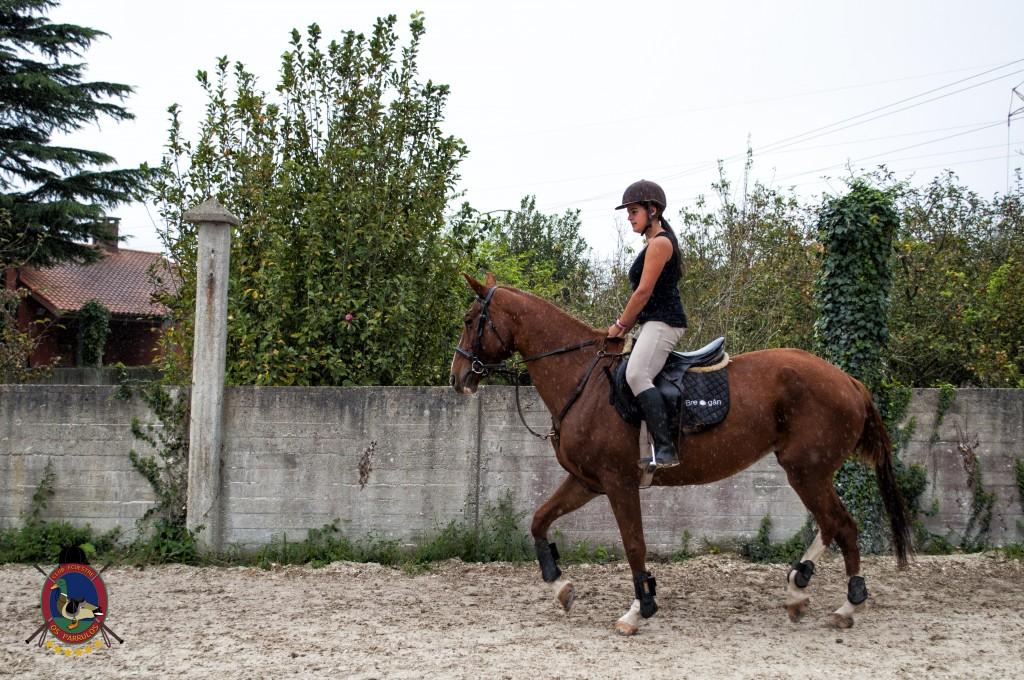 Os Parrulos_clases de equitación_clases de salto_hipica La Coruña_T12