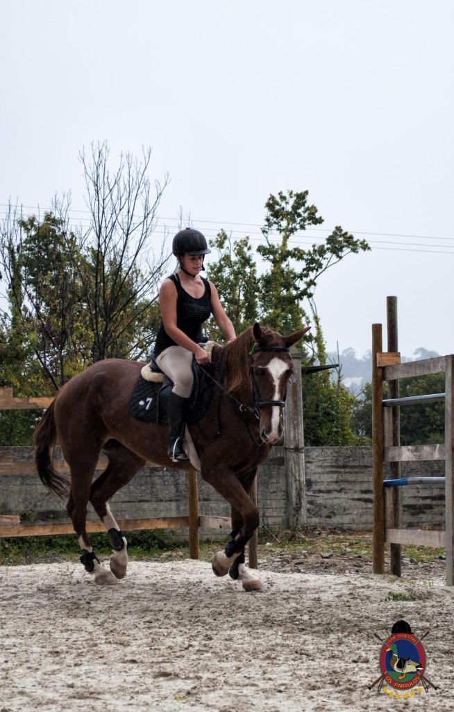 Os Parrulos_clases de equitación_clases de salto_hipica La Coruña_T13