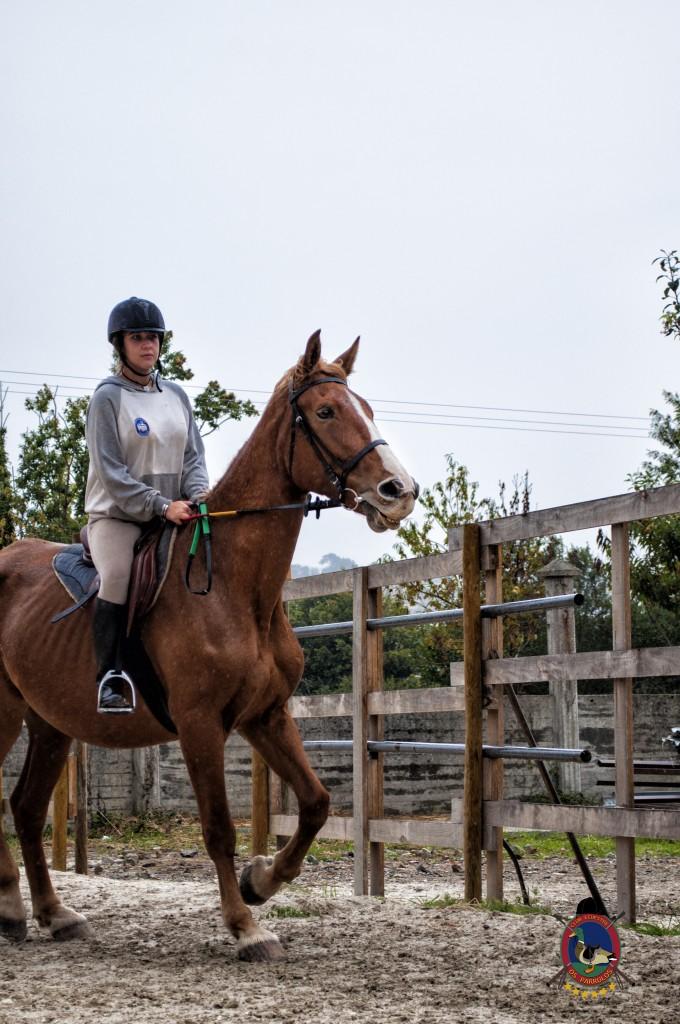Os Parrulos_clases de equitación_clases de salto_hipica La Coruña_T14