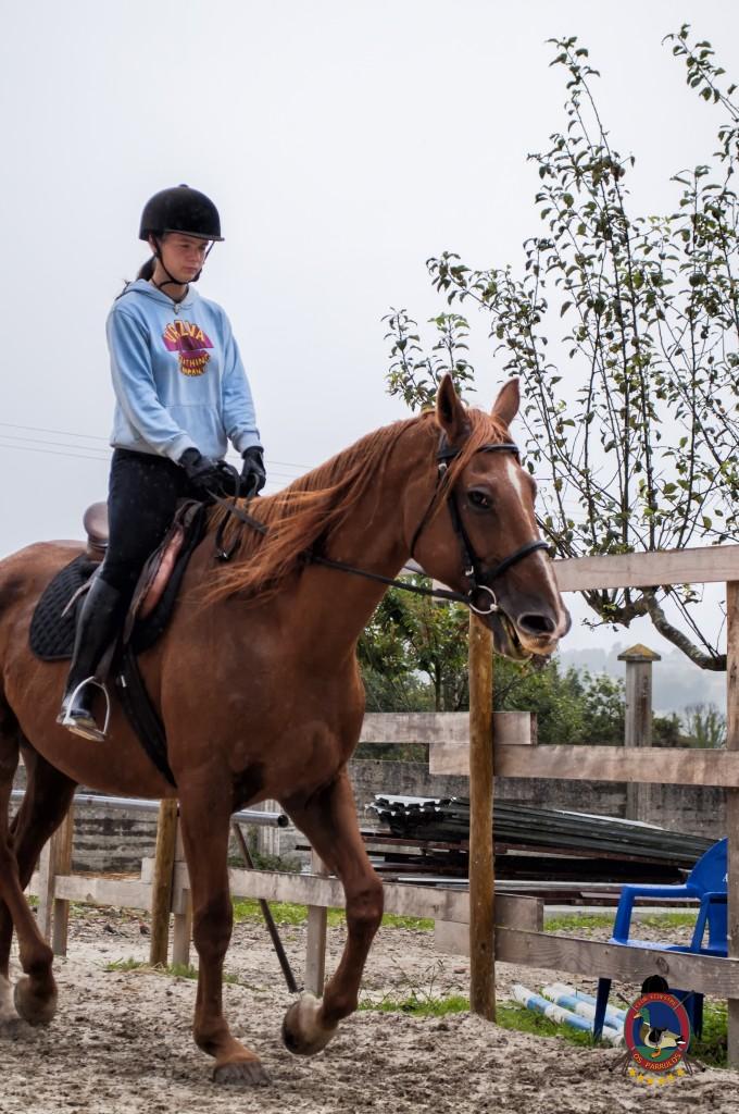 Os Parrulos_clases de equitación_clases de salto_hipica La Coruña_T15
