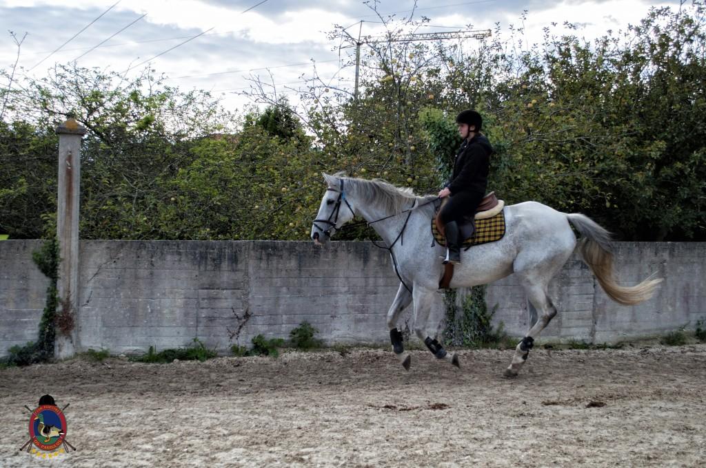 Os Parrulos_clases de equitación_clases de salto_hipica La Coruña_T21