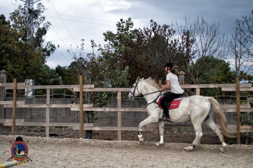 Os Parrulos_clases de equitación_clases de salto_hipica La Coruña_T23