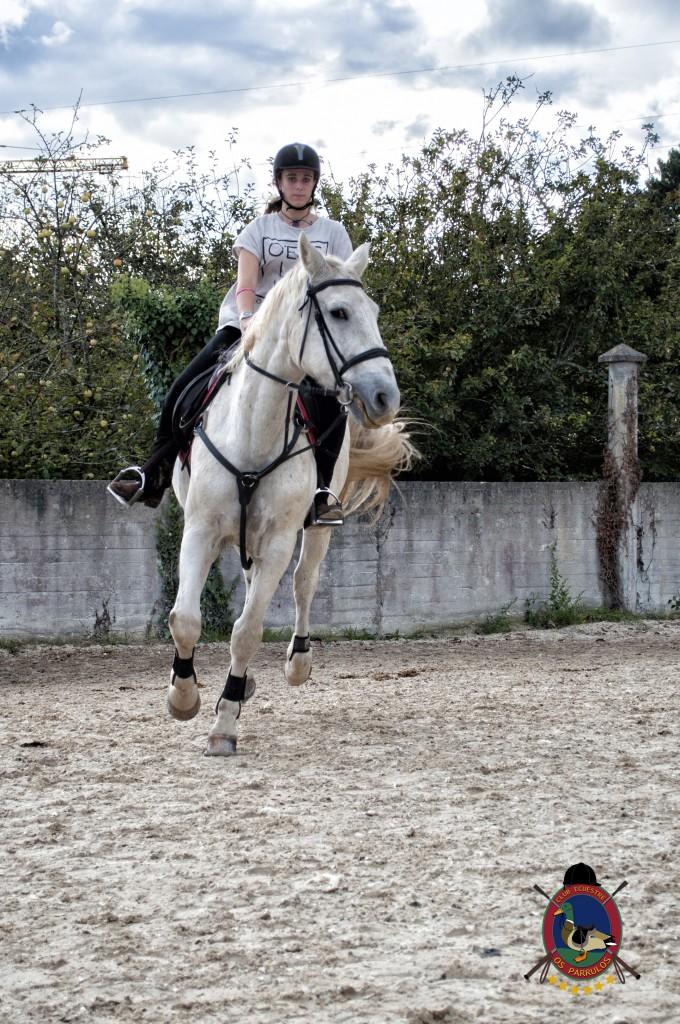 Os Parrulos_clases de equitación_clases de salto_hipica La Coruña_T24