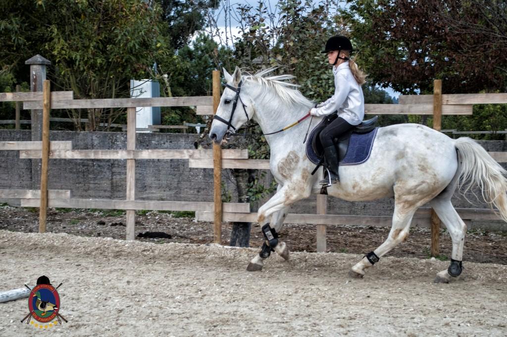 Os Parrulos_clases de equitación_clases de salto_hipica La Coruña_T25
