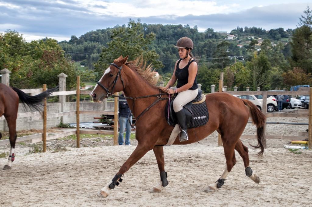 Os Parrulos_clases de equitación_clases de salto_hipica La Coruña_T26