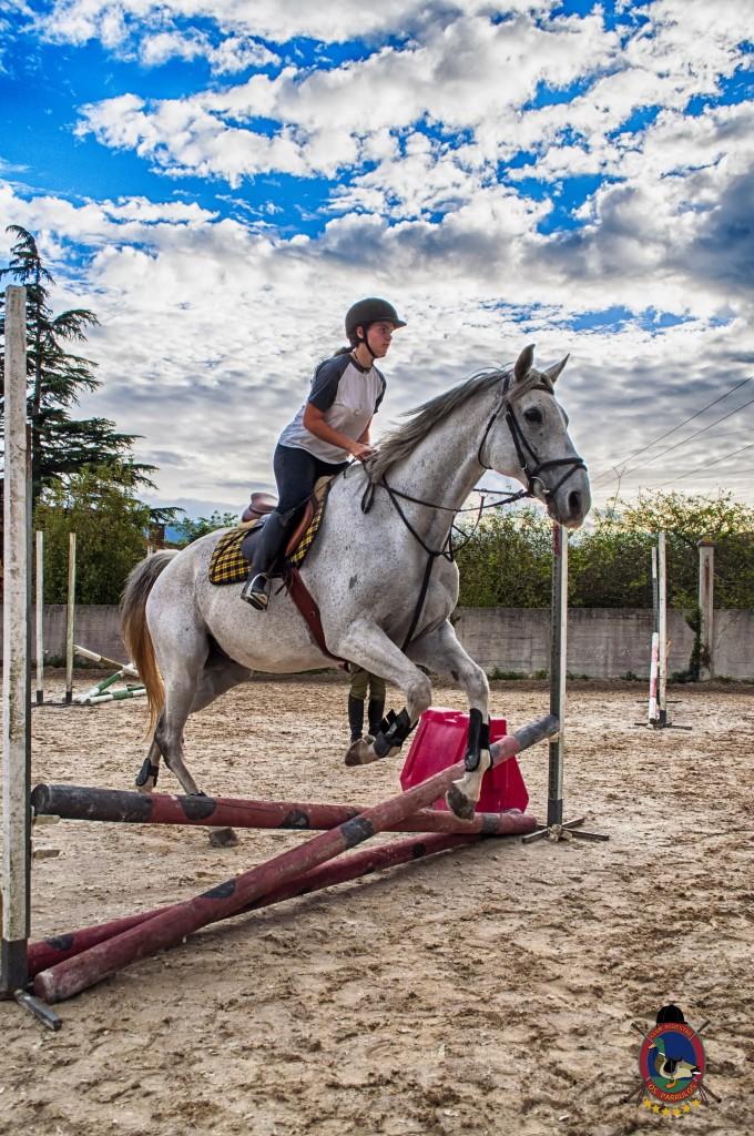 Os Parrulos_clases de equitación_clases de salto_hipica La Coruña_T27
