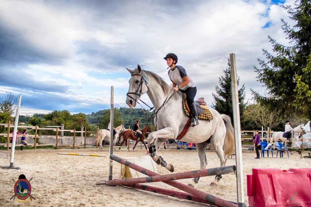 Os Parrulos_clases de equitación_clases de salto_hipica La Coruña_T28