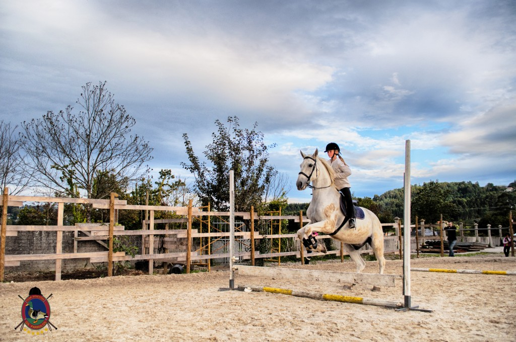 Os Parrulos_clases de equitación_clases de salto_hipica La Coruña_T31