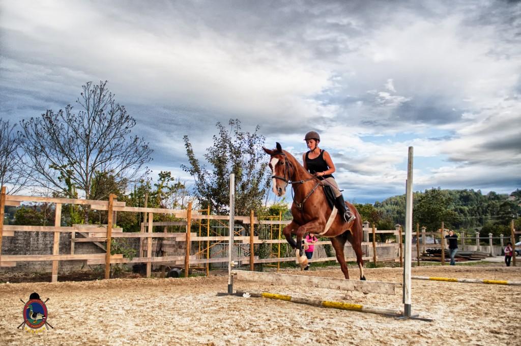 Os Parrulos_clases de equitación_clases de salto_hipica La Coruña_T32