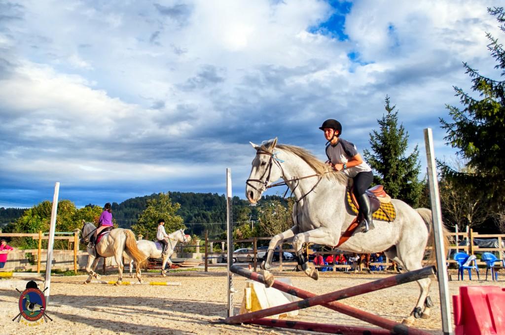 Os Parrulos_clases de equitación_clases de salto_hipica La Coruña_T33